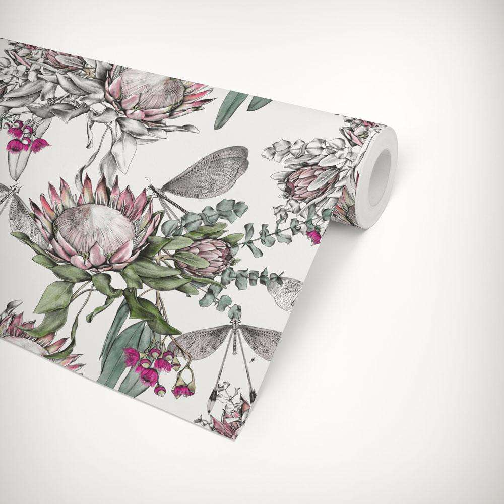 protea flower wallpaper